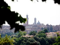 Unique villa with views of the town of Siena with its famous bell towers!