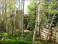 Snowmass Duplex with large decks and beautiful grounds (202982)