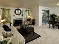 Elegant 1 Bedroom Apartment