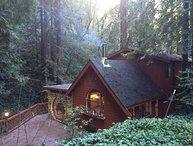 Furnished 2-Bedroom Home at Redwood Rd & Mt Veeder Rd Napa
