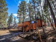 1494-Living Log Cabin