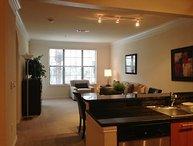 Glamorous 2 Bedroom Apartment