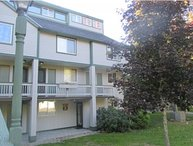 Waterville Valley Pet Friendly Condo Walking Distance to the Town Square