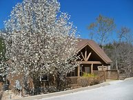 "Romantic, Fun, ""Woodland Romance"" Luxury 1-Br Cabin, Hiking Fishing, Comfort"