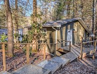 Pisgah Hillside Haven - Brevard/Asheville, hiking, mtn biking, shopping!